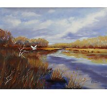 River Marsh Photographic Print