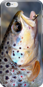Blue Gill Brown iPhone case by James Lady