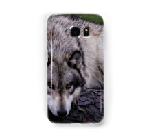A wolf on a wet log Samsung Galaxy Case/Skin