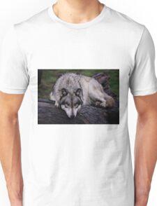 A wolf on a wet log Unisex T-Shirt
