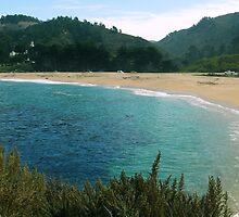 #1069  - The Carmel River Beach by MyInnereyeMike
