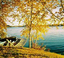 Stevenson Island, Manitoba by Nora Fraser