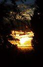 Sunrise iPhone by Evita