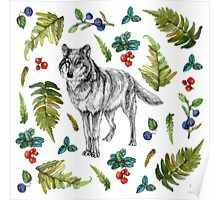 Wolf with fern and berries Poster