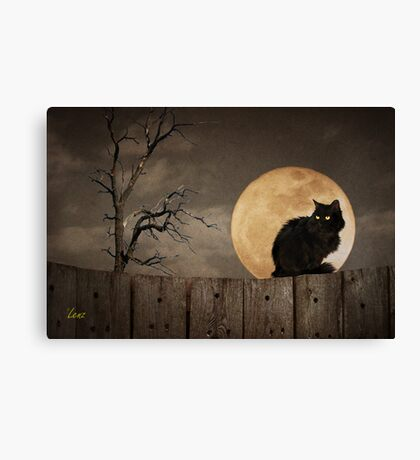 Cat On A Fence Canvas Print
