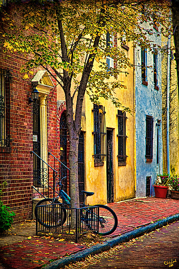 Autumn In Philly by Chris Lord