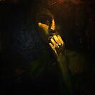 Lantern by Skye O'Shea