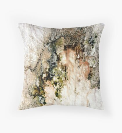Decay intricacies Throw Pillow