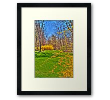 Joyful Spring Framed Print