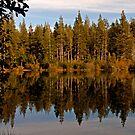 Sand Pond Autumn Glow by Patty Boyte