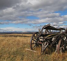 Old Buggy by Kathi Huff