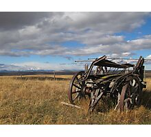 Old Buggy Photographic Print