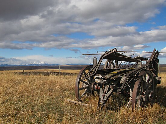 Old Buggy by Kathi Arnell