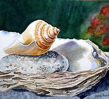 Sea Shell on the Rock by Irina Sztukowski