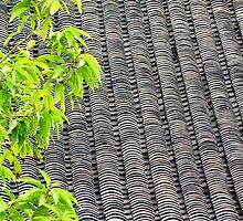 Tiled Roof © by Ethna Gillespie