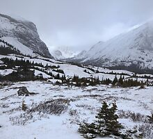 Elbow Pass valley IV by zumi