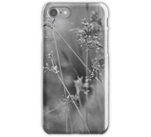 Stalks of Silver (iPhone Case) iPhone Case/Skin
