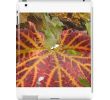 Autumnal Leaves iPad Case/Skin
