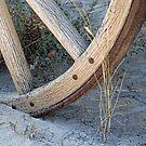Wagon Wheel by Brian R. Ewing