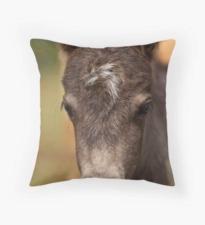 Irresistable You  Throw Pillow