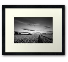 Bejewelled Sky BW Framed Print
