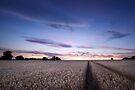 Bejewelled Sky by Andy Freer