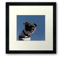 No more treats? I can't believe it!! Framed Print