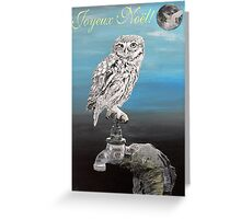 French Christmas Little Owl Greeting Card