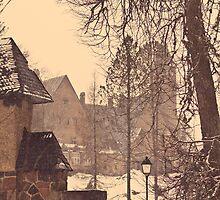 Taagepera Castle by tutulele
