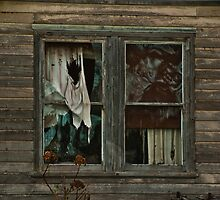 0407 Neglected Old Window by DavidsArt