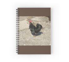 Black Cock Spiral Notebook