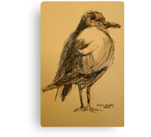 Winter seagull: pen and wash Canvas Print