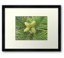 green spikes around... Framed Print