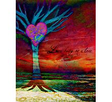 Love hung on a tree Photographic Print