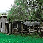 Remnant of a bygone era - Laidley QLD by Neil Ross