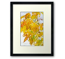 Autumn Snow Portrait Framed Print