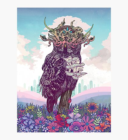 Journeying Spirit (Owl) Photographic Print