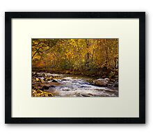 Fall Splendor in the Smokies Framed Print