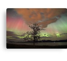 Auroras with multiple colors Canvas Print