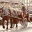Horse-drawn Ride by Tracy Riddell