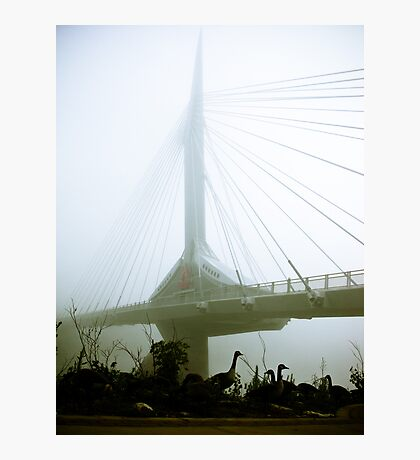 Foggy Waterfront 10 Photographic Print