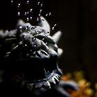 Dragon Bubbles by Sharlene Rens