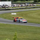 ALMS 2011 LRP Porsche 911 997 GT3 RSR Flying Lizard by gtexpert