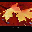"""""""Fall Beauty"""" was taken with a Canon Power Shot 610 - 5.0 Mega Pixels.  Minnesota is so beautiful this time of the year by Moninne Hardie"""