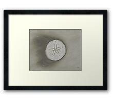 Sand Dollar Monochromatic Pencil Drawing Framed Print