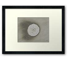 Sand Dollar Monochromatic Pencil Drawing Framed Print