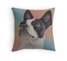 My Sweet Boston Terrier, in pastels Throw Pillow