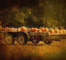 Pumpkin Harvest by Lucinda Walter