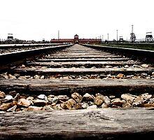 Tracks leading to Auschwitz by Wintermute69