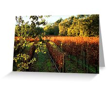 Late Autumn View of Napa Valley 2 Greeting Card